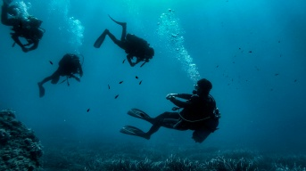 Divers trying to descend as the instructor looks on - Golfe Juan, France
