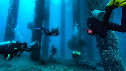 One of my favourite dive sites (The Jetty) in Bali, Indonesia