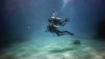 An instructor conducting a dive session for a newcomer - Bali, Indonesia